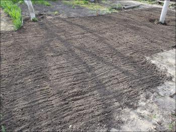 газонная трава увлажняется